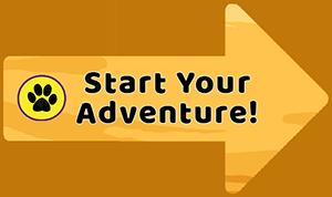 Start Your Adventure
